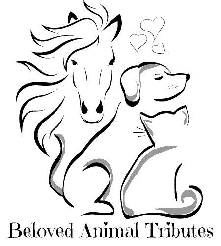 Beloved Animal Tributes